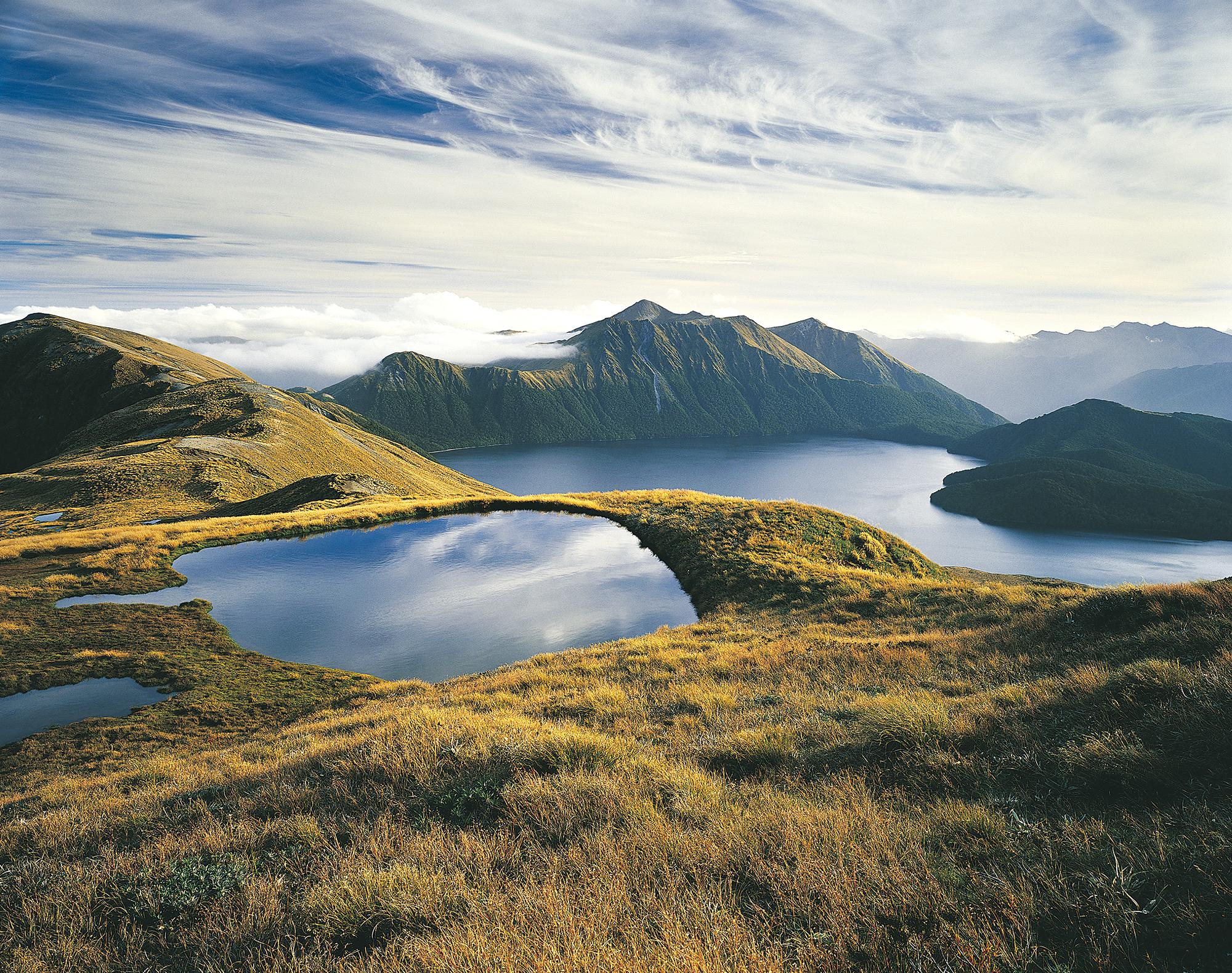 NZB FSi Green Lake.jpg