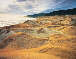 Mason Bay Sand Dunes