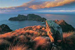 Rugged Islands