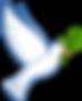 SOC_Logo (1).gif