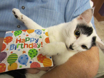 Jaax's second birthday