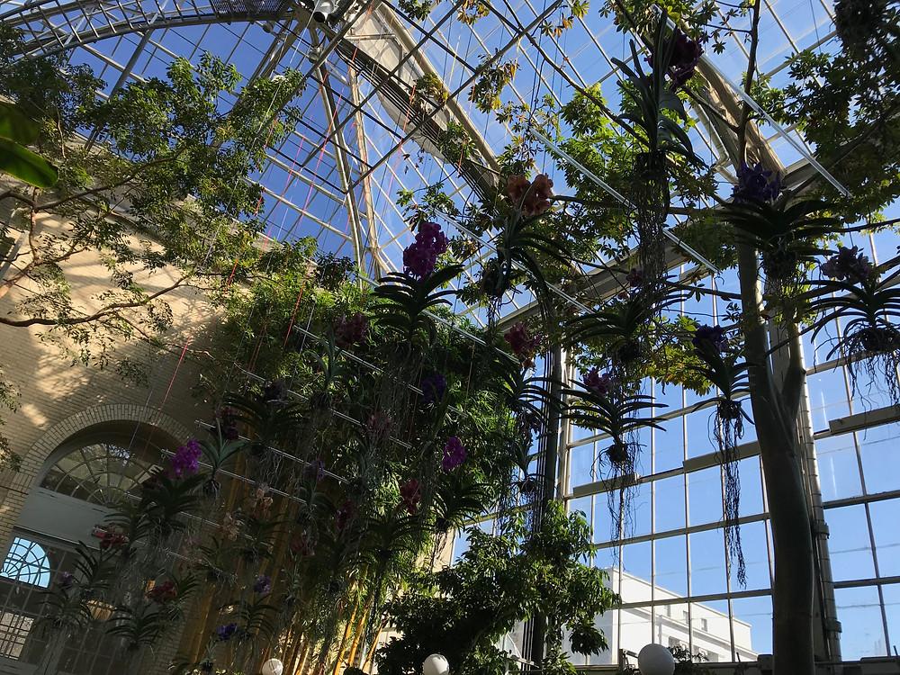 The United States Botanical Garden