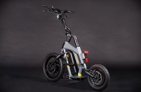 STEEREON S20 - Grau- Sportlicher E-Scoot
