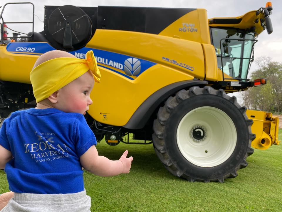 baby new holland