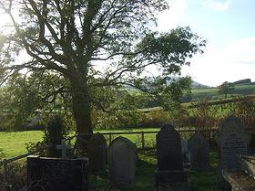 Graveyard with Tree.jpg