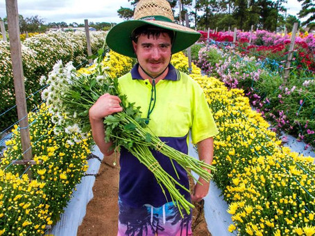 More than 1,000 workers with a disability back on the job in Queensland