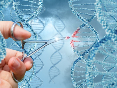 In Vivo RNA Editing Repairs Rett Mutation in Mouse Hippocampus