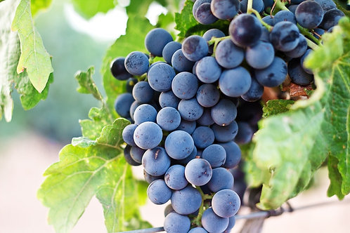 Black seed Grapes (0.5 Kg)