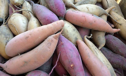 Sweet Potato (0.5 Kg)