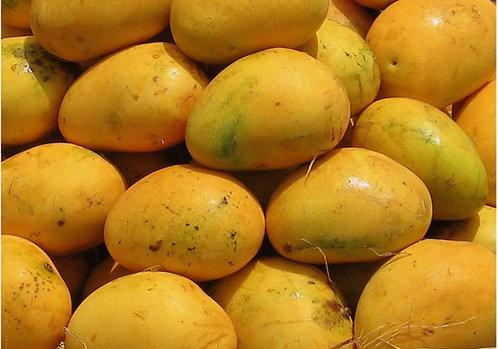 Banginapalli Mangoes (1 Kg)