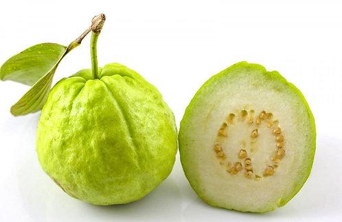 Guava White (1 No)