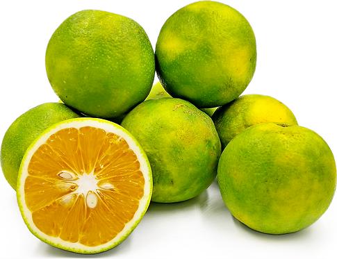 Mosambi (Sweet lemon) (1 Kg)