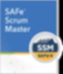 Courseware-Thumb_SSM_270.png