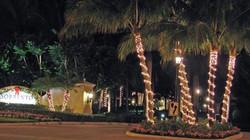 08_lights_564