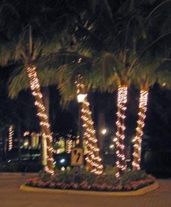08_lights_561