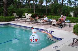 snowman596