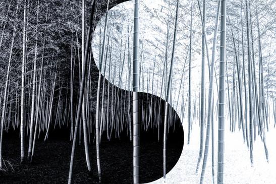 Yin-yang no.2.jpg