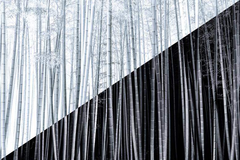 Yin-yang no.5.jpg