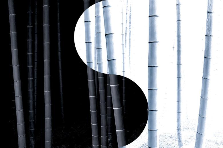 Yin-yang no.9.jpg