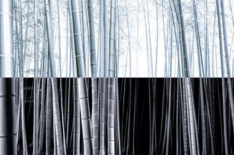 Yin-yang no.10.jpg