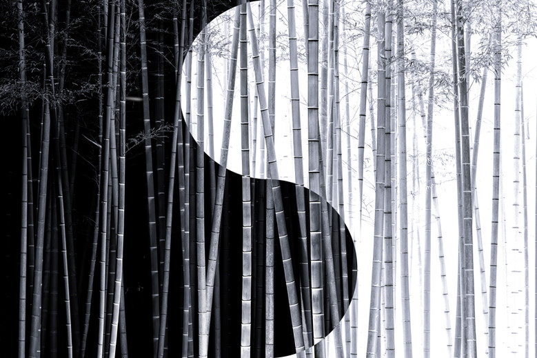 Yin-yang no.6.jpg