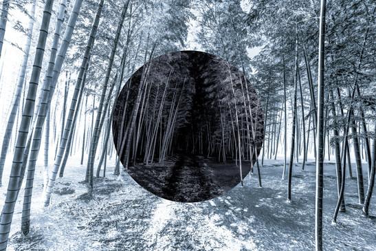 Yin-yang no.4.jpg