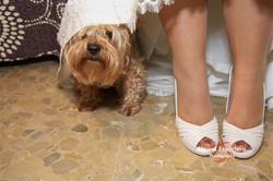 Muestras bodas 0107