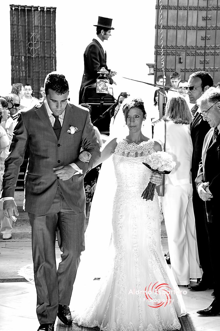 Muestras bodas 0907