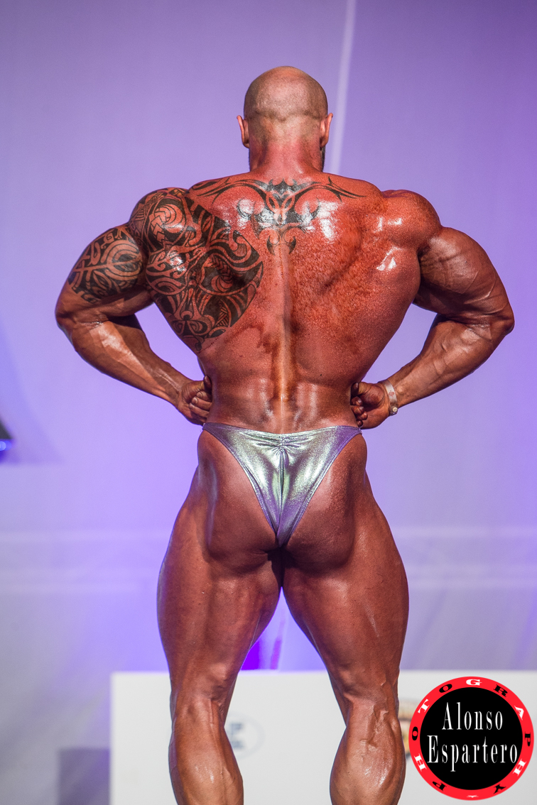 MR OLYMPIA DOMINGO -4534