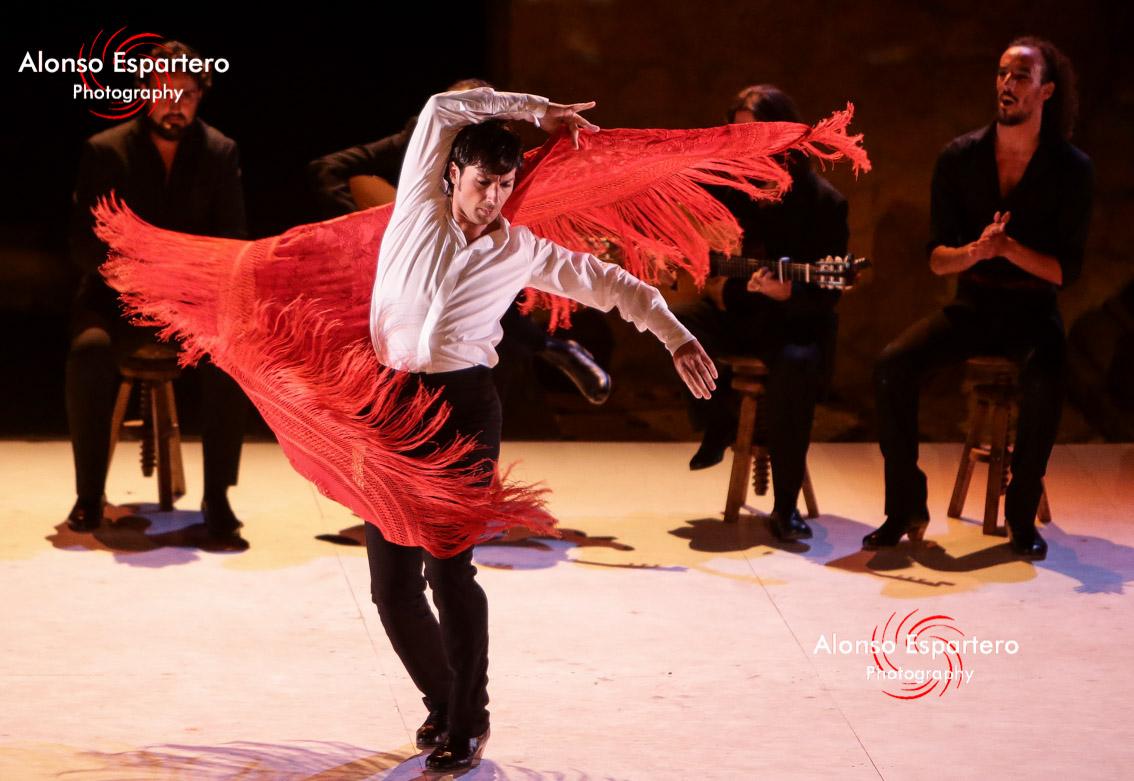 Ballet flamenco de andalucia462