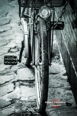 bicicletas_7627