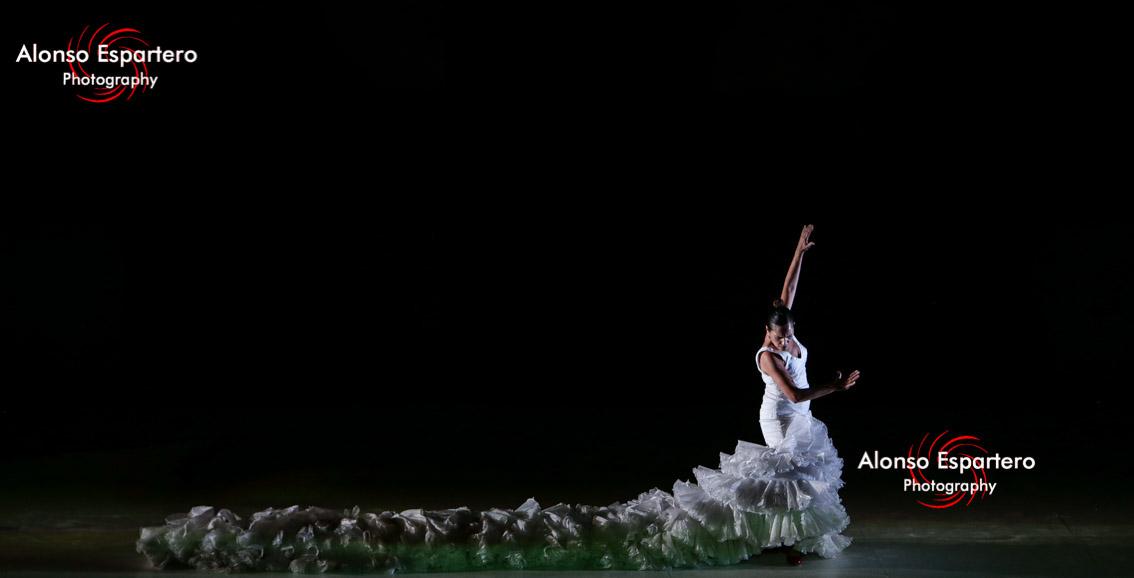 Ballet flamenco de andalucia50