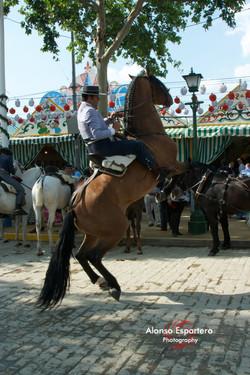Feria 2011 0672