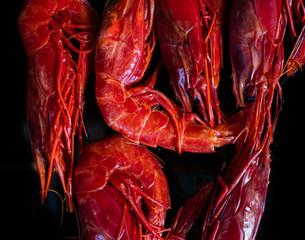 Carabinero –Mediterranean wild prawns