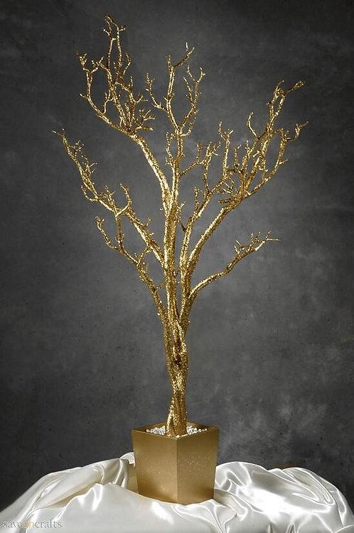 4 FeetTall Gold Manzanita Tree