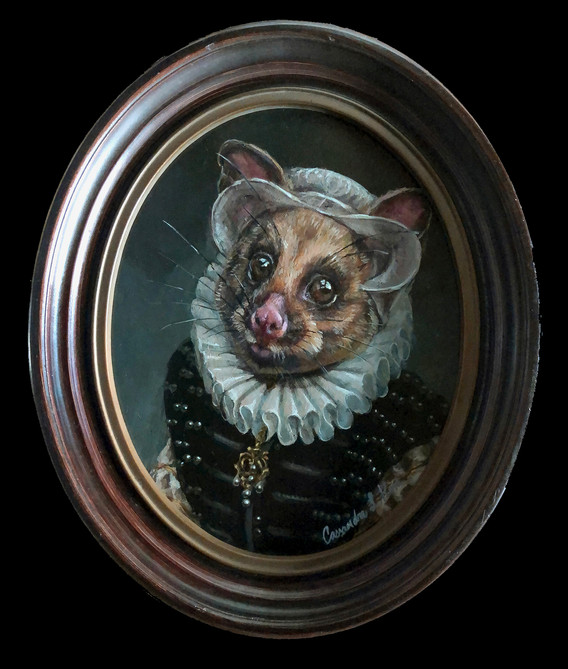 """Portrait of a Possum"""