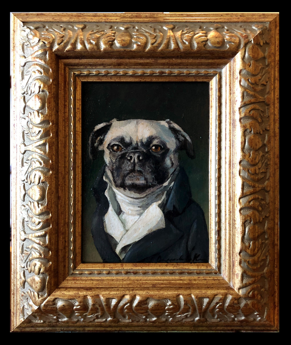 """Willoughby the Pug"""