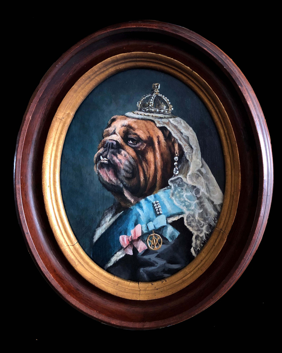 """Queen Victoria Bulldog"""