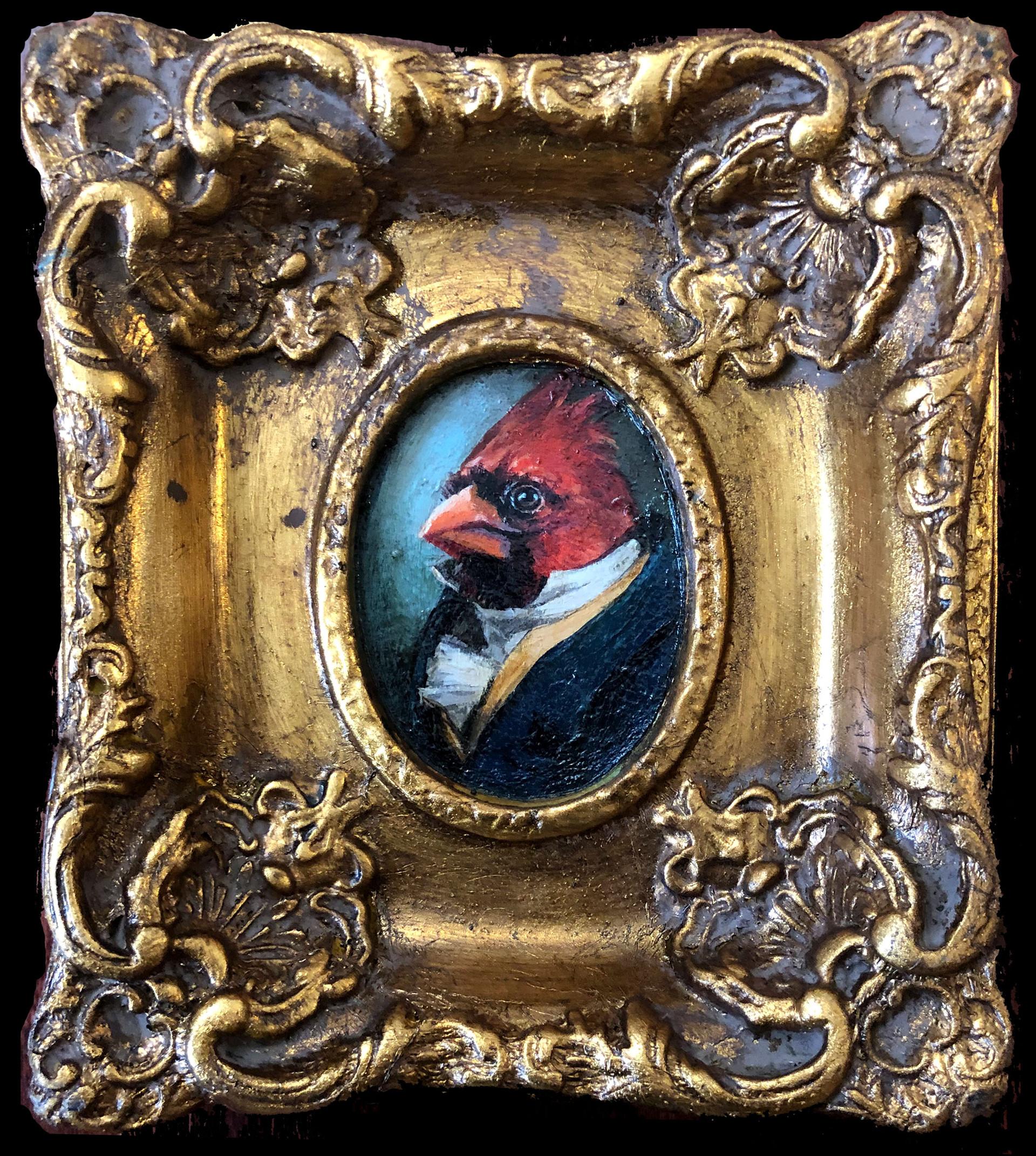 """""""Gentleman Cardinal"""""""