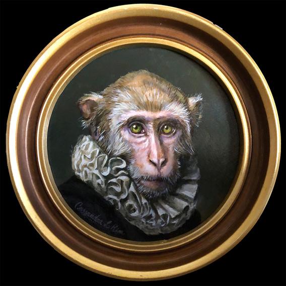 """Portrait of Giovanni Macaque"""