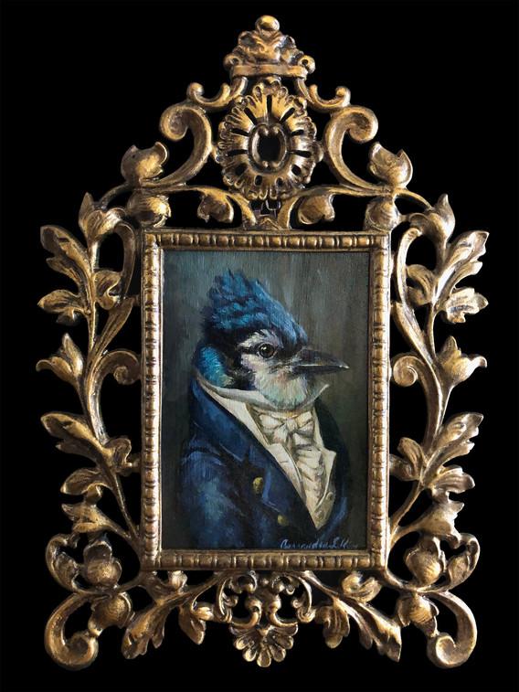 """""""Gentleman Bluejay"""""""