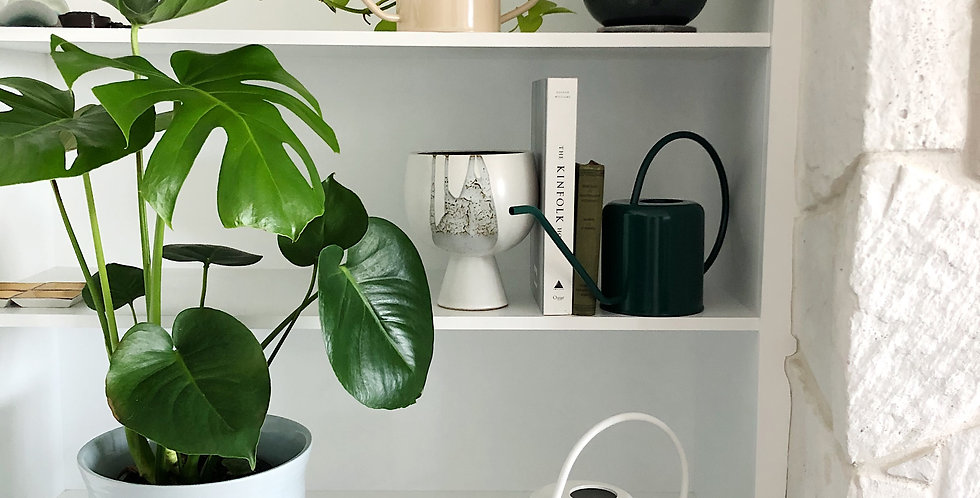 FALLS WATERING CAN