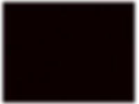 BURRO_logo.png