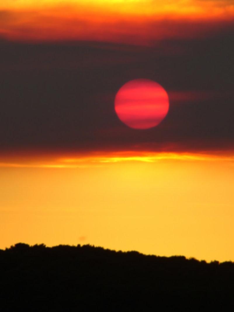 pink sun.jpg