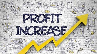 Profit Increase - Success Concept. Inscr