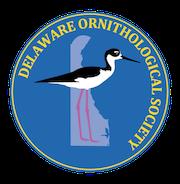 DOS BIRD-A-THON 2021