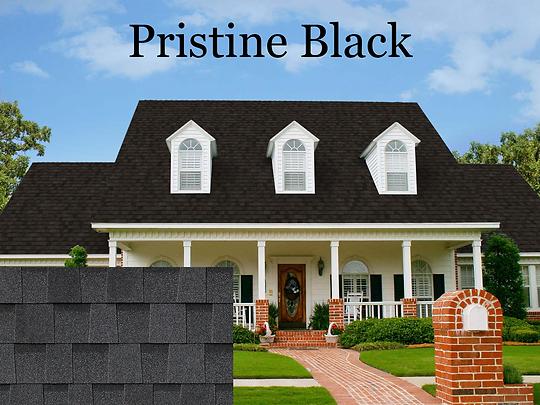 Pristine Black1.png