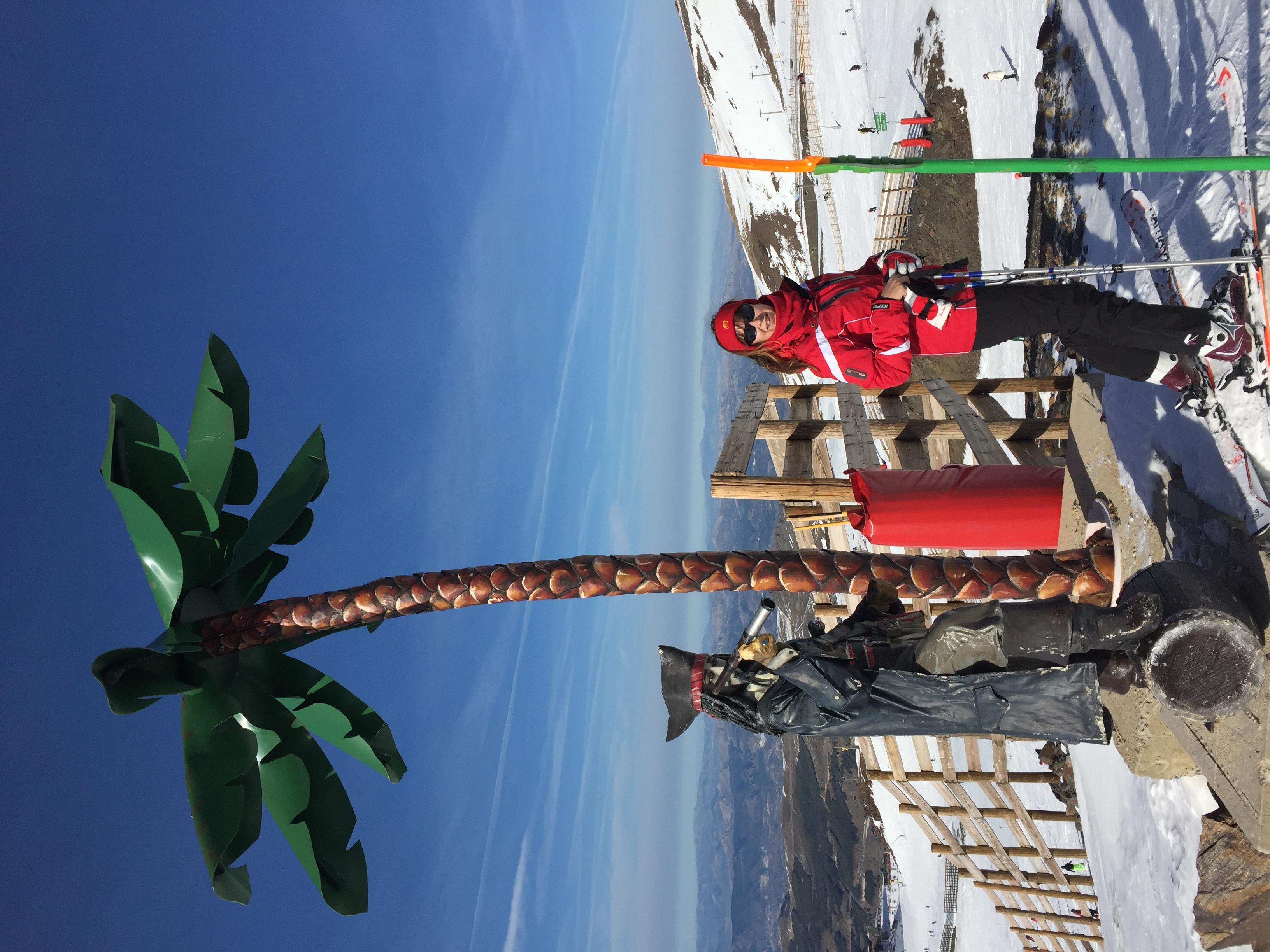 Пальмы на склоне Сьерра Невада