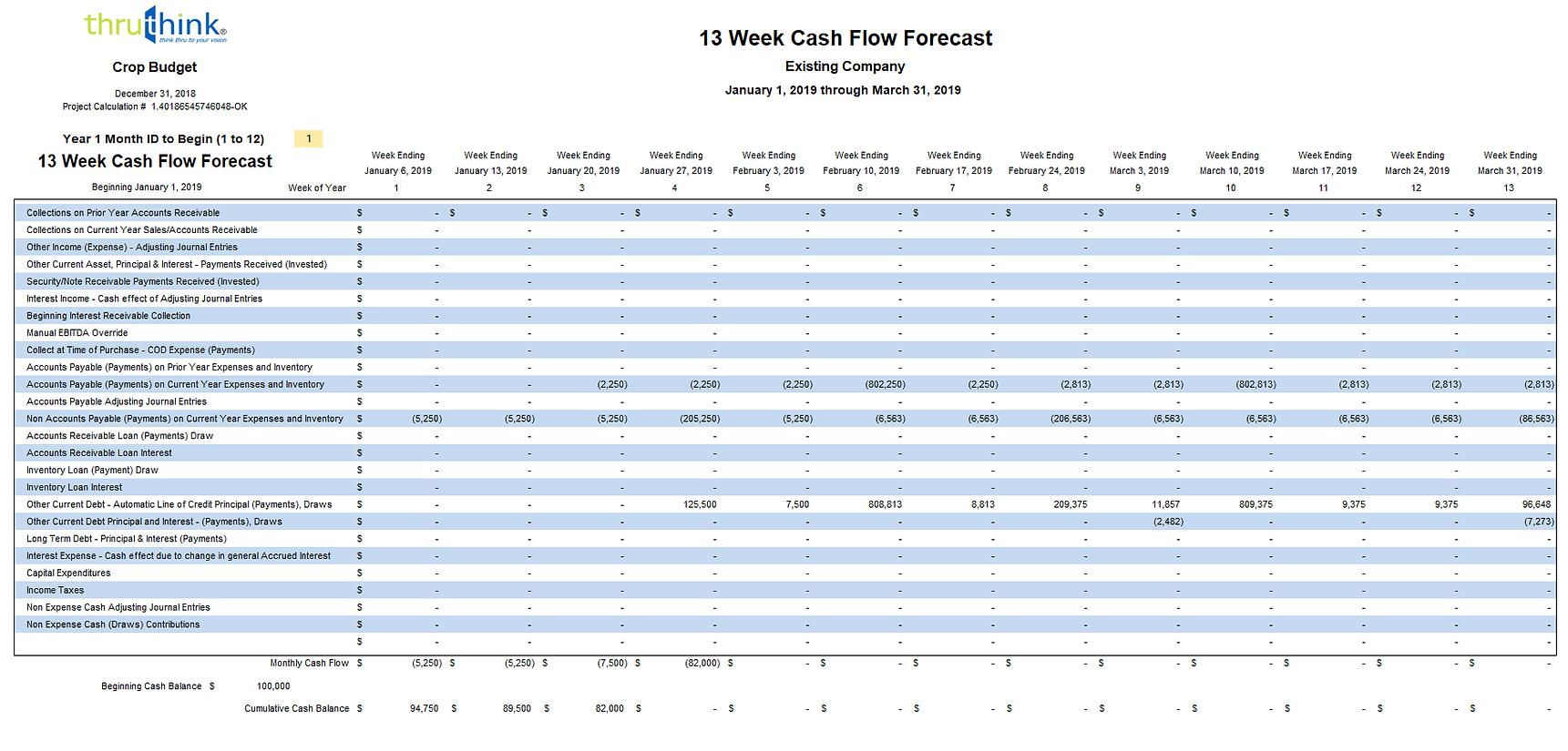13 Week Cash Flow.png