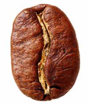 arabica.PNG